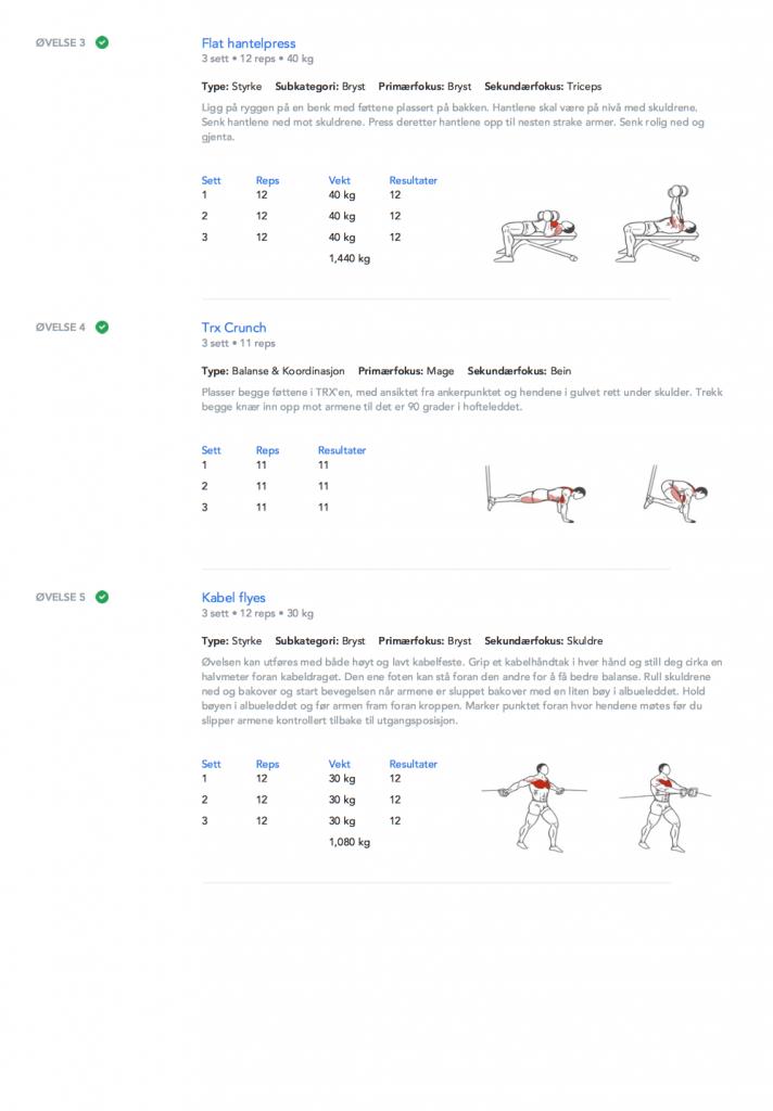 Treningsprogram PDF side 2